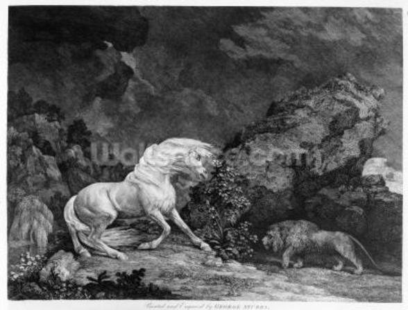 A Horse Affrighted by a Lion, engraved by the artist, 1777 (etching) wall mural