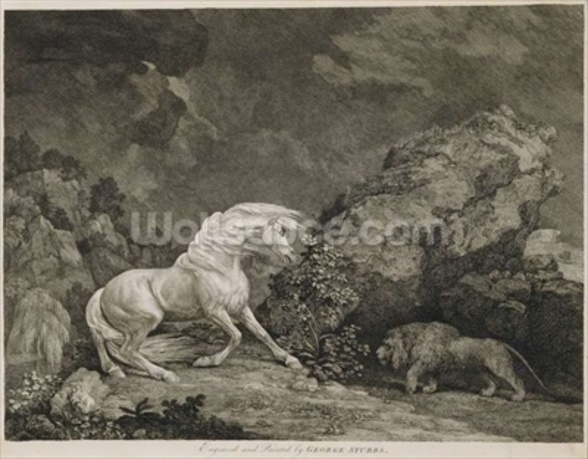 A Horse Affrighted by a Lion, engraved by the artist (etching) wall mural