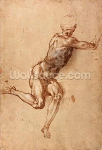 A seated male nude twisting around, c.1505 (pen & ink with wash on paper) wall mural