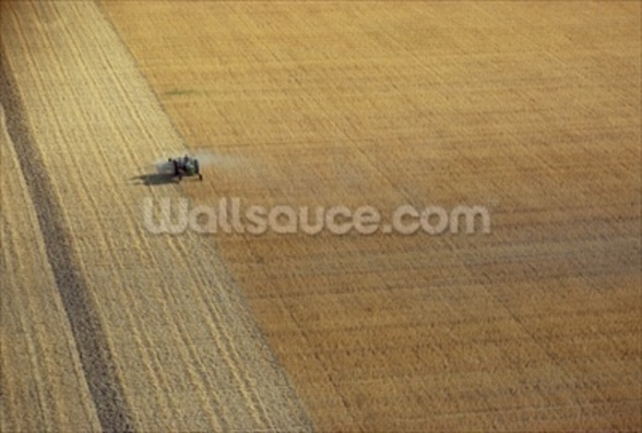 A tractor harvesting (photo) mural wallpaper