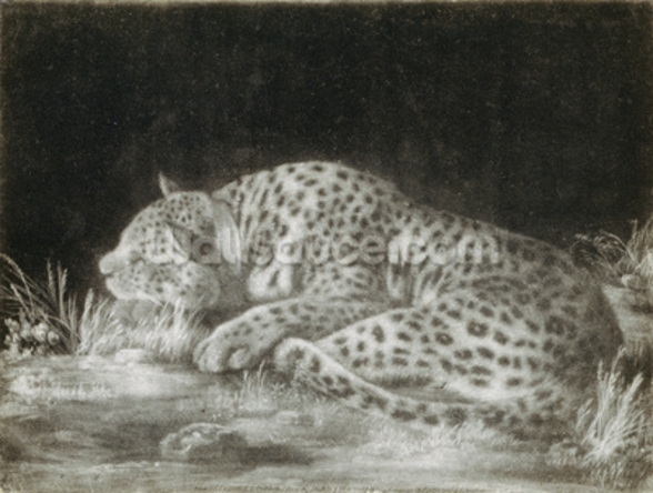 A Tyger (A Sleeping Cheetah) (mezzotint) wallpaper mural