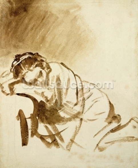 A Young Woman Sleeping (Hendrijke Stoffels) c.1654 (brush & brown wash on paper) wallpaper mural