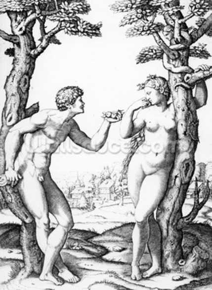 Adam and Eve, engraved by Marcantonio, c.1520 (engraving) wall mural