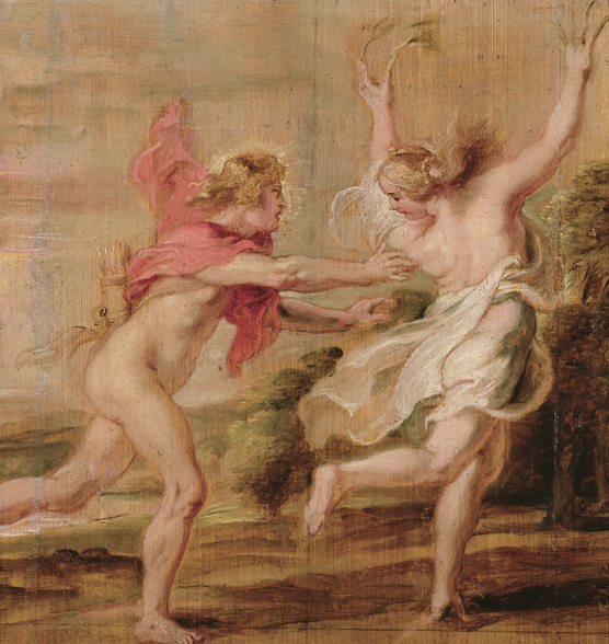 Apollo and Daphne, c.1636 (oil on panel) wall mural