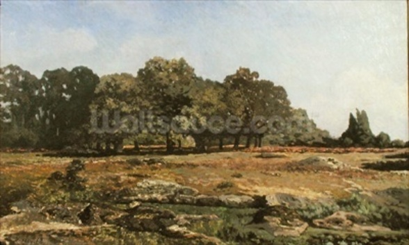 Avenue of Chestnut Trees at La Celle-Saint-Cloud, c.1866-67 (oil on canvas) wallpaper mural