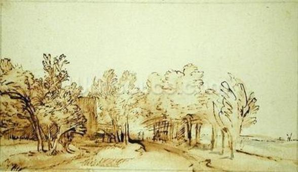 Avenue with a footpath and a farmhouse on the left (pen and brown ink and brush on paper) mural wallpaper