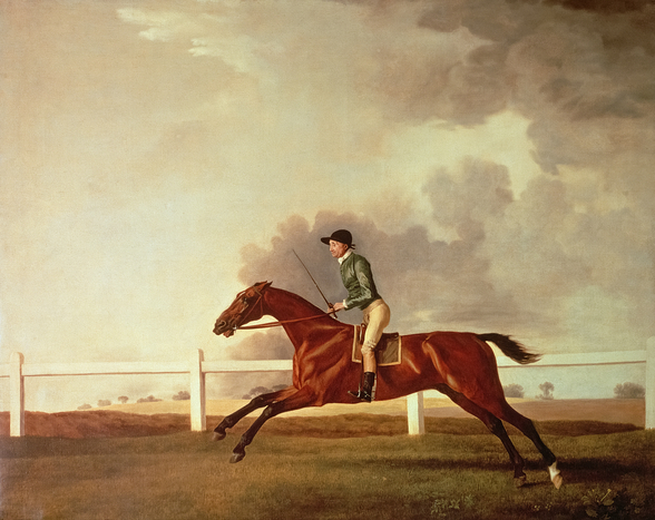 Bay Malton with John Singleton Up, c.1767 (oil on canvas) wall mural