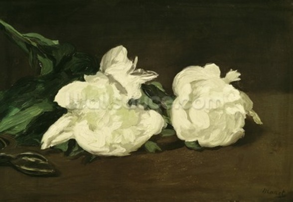 Branch of White Peonies and Secateurs, 1864 (oil on canvas) mural wallpaper