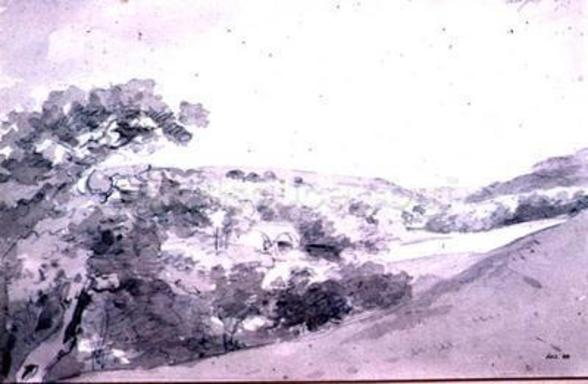 Chatsworth Park 99;landscape; monochrome; hill; hilly; wall mural