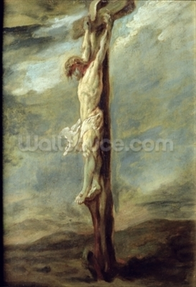 Christ on the Cross (oil on canvas) wall mural