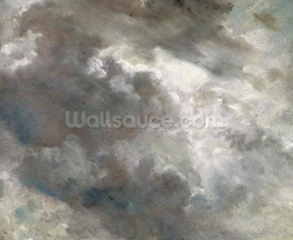 Cloud Study, 1821 (oil on paper laid down on paper) wall mural