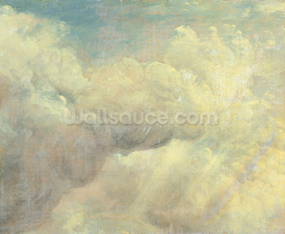 Cloud Study, c.1821 (oil on canvas) wall mural