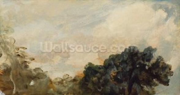 Cloud Study with Trees, 1821 (oil on paper laid down on board) wallpaper mural