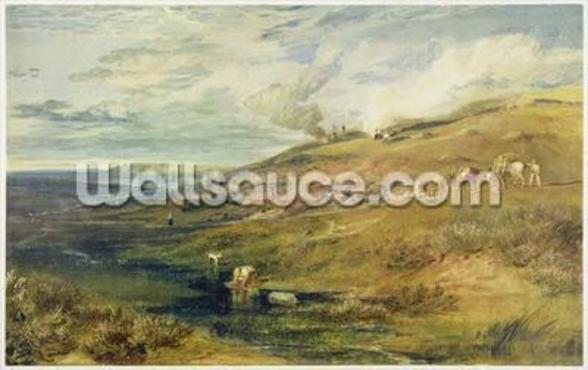 Dartmoor: The Source of the Tamar and the Torridge, c.1813 (w/c & bodycolour over graphite on paper) mural wallpaper