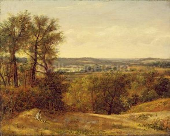 Dedham Vale, c.1802 (oil on canvas) wall mural