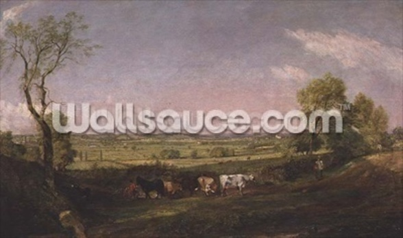 Dedham Vale: Morning, c.1811 mural wallpaper