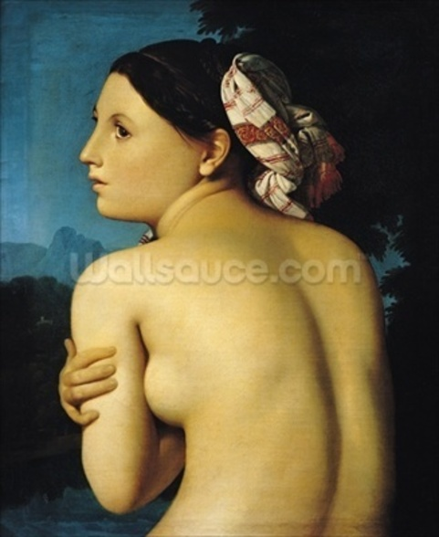 Female nude, 1807 (oil on canvas) wall mural