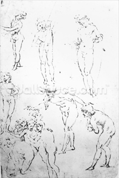 Figural Studies for the Adoration of the Magi, c.1481 (pen and ink on paper) mural wallpaper