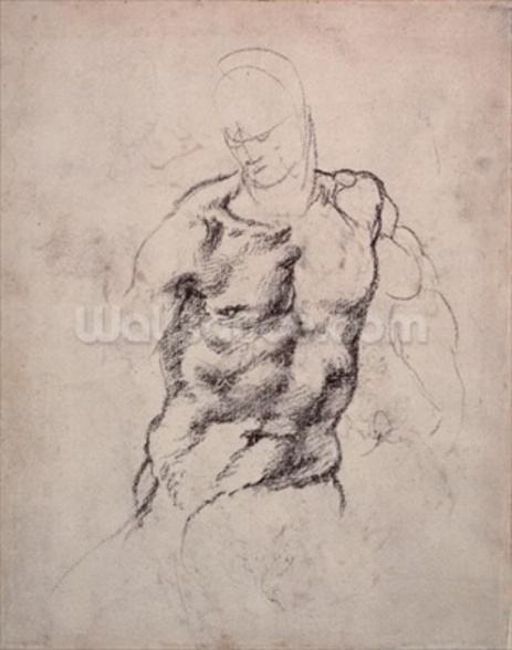 Figure Study (charcoal on paper) wall mural