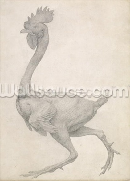 Fowl: Lateral view with Most Feathers Removed, from the series A Comparative Anatomical Exposition of the Structure of the Human Body with that of a Tiger and a Common Fowl (graphite on paper) wall mural