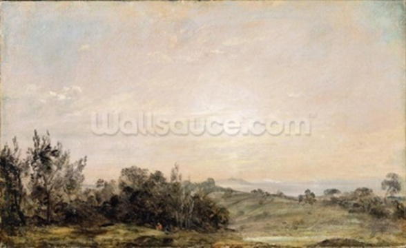 Hampstead Heath, looking towards Harrow, 1821-22 (oil on paper laid on canvas) mural wallpaper