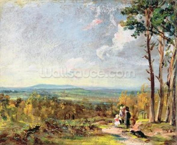 Hampstead Heath Looking Towards Harrow, 1821 (oil on paper laid on canvas) wall mural