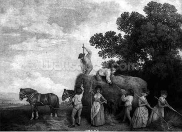 Hay-Makers (engraving) wall mural