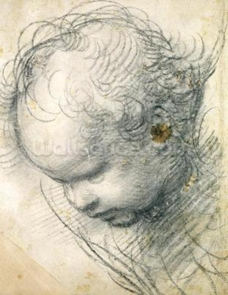 Head of a Cherub (black chalk and charcoal on paper) wall mural