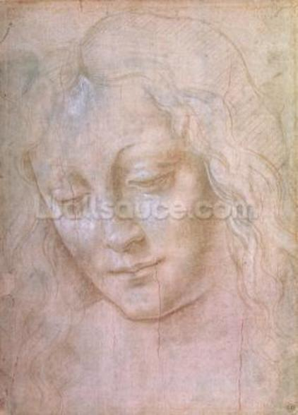Head of a woman (metal point heightened with gouache) wall mural