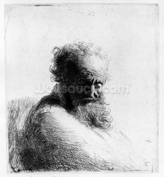 Head of an old man, 1631 (etching) wall mural