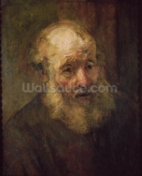 Head of an Old Man, c.1650 (oil on canvas) wall mural