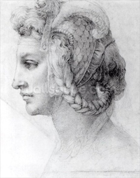 Ideal Head of a Woman, c.1525-28 (black chalk on paper) (b/w photo) wall mural