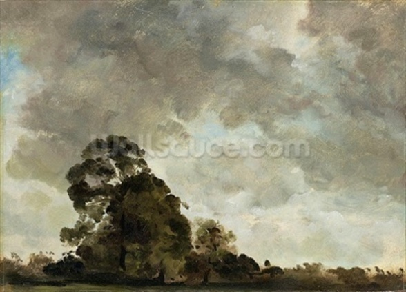 Landscape at Hampstead, Tree and Storm Clouds, c.1821 (oil on paper laid down on panel) wallpaper mural