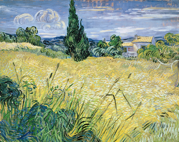 Landscape with Green Corn, 1889 (oil on canvas) wall mural