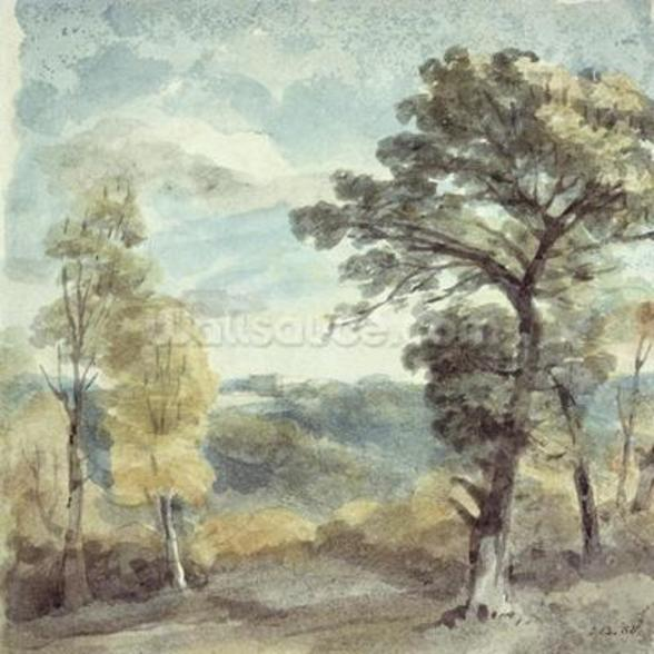 Landscape with Trees and a Distant Mansion (watercolour) mural wallpaper