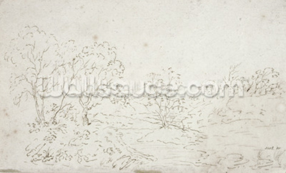 Landscape: a stream running between trees (drawing) wall mural