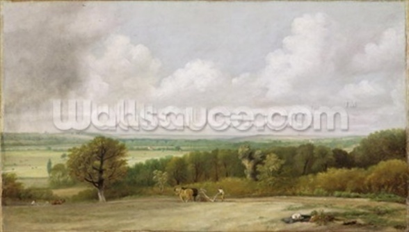 Landscape: Ploughing Scene in Suffolk (A Summerland) c.1824 (oil on canvas) wall mural