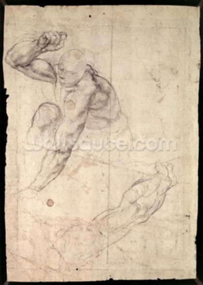 Male figure study (pencil on paper) wall mural