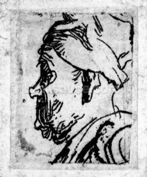 Old man with a snub nose, c.1629 (etching) wallpaper mural