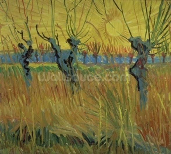 Pollarded Willows and Setting Sun, 1888 (oil on card) wall mural
