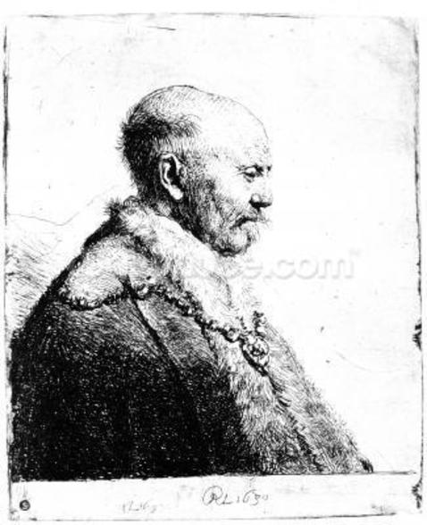 Portrait of a bald-headed man, 1630 (etching) wall mural