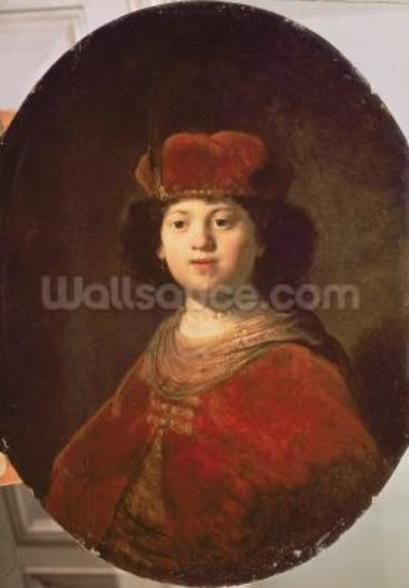 Portrait of a Boy, 1634 (oil on canvas) wallpaper mural
