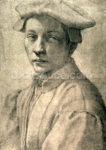 Portrait of Andrea Quaratesi, c.1532 (black chalk on paper) wallpaper mural