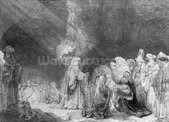 Presentation in the Temple (etching) (b/w photo) wall mural