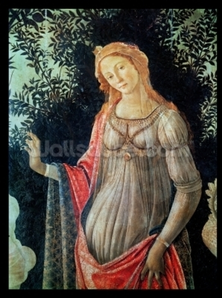 Primavera, detail of Venus, c.1478 (tempera on panel) wallpaper mural