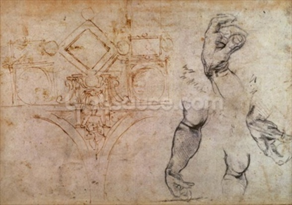 Scheme for the Sistine Chapel Ceiling, c.1508 (pen & ink and chalk on paper) wall mural