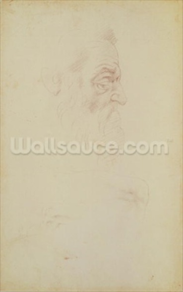 Sketch of a male head and two legs (charcoal on paper) mural wallpaper
