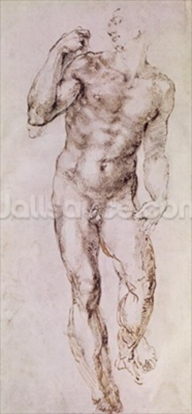 Sketch of David with his Sling, 1503-4 (pen & ink on paper) wall mural