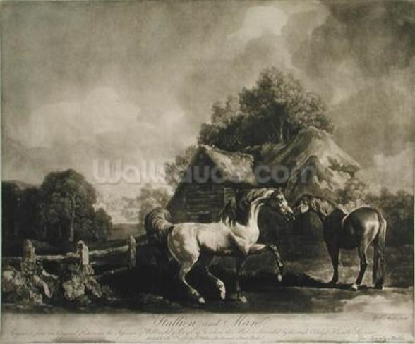 Stallion and Mare, engraved by George Townley Stubbs (1756-1815) 1776 (mezzotint) wall mural