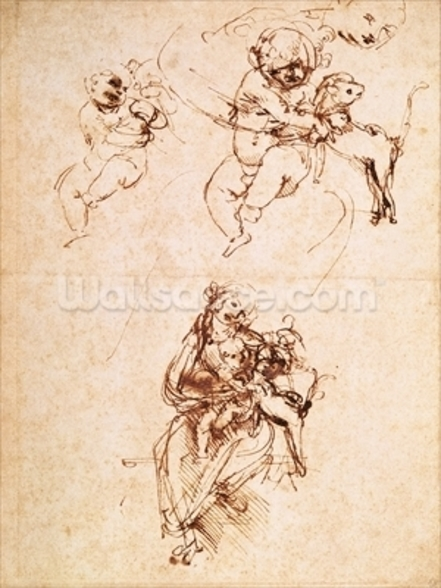 Studies for a Madonna with a Cat, c.1478-80 (pen and ink on paper) mural wallpaper